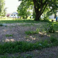 319 S. 8th St, Rockport, IN 47635 (Residential Lot)